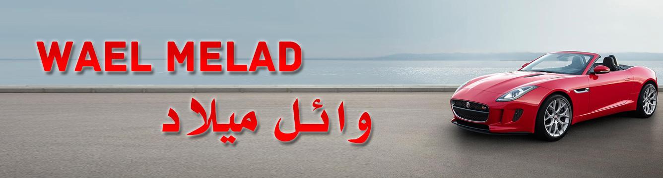 Wael Melad