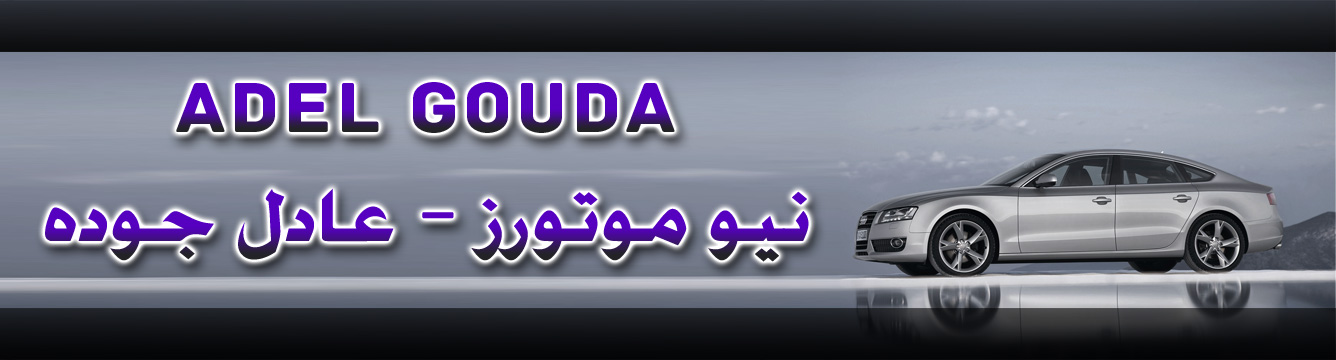 Adel Gouda