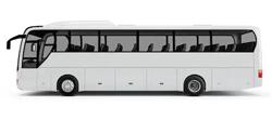 حافلة / باص